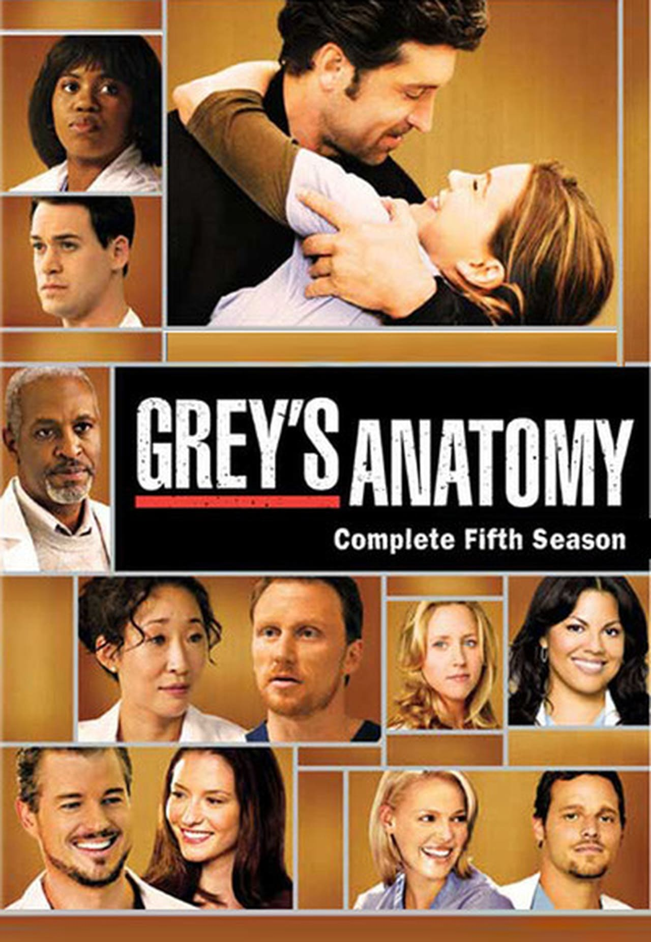 Putlocker Grey's Anatomy Season 5 (2008)
