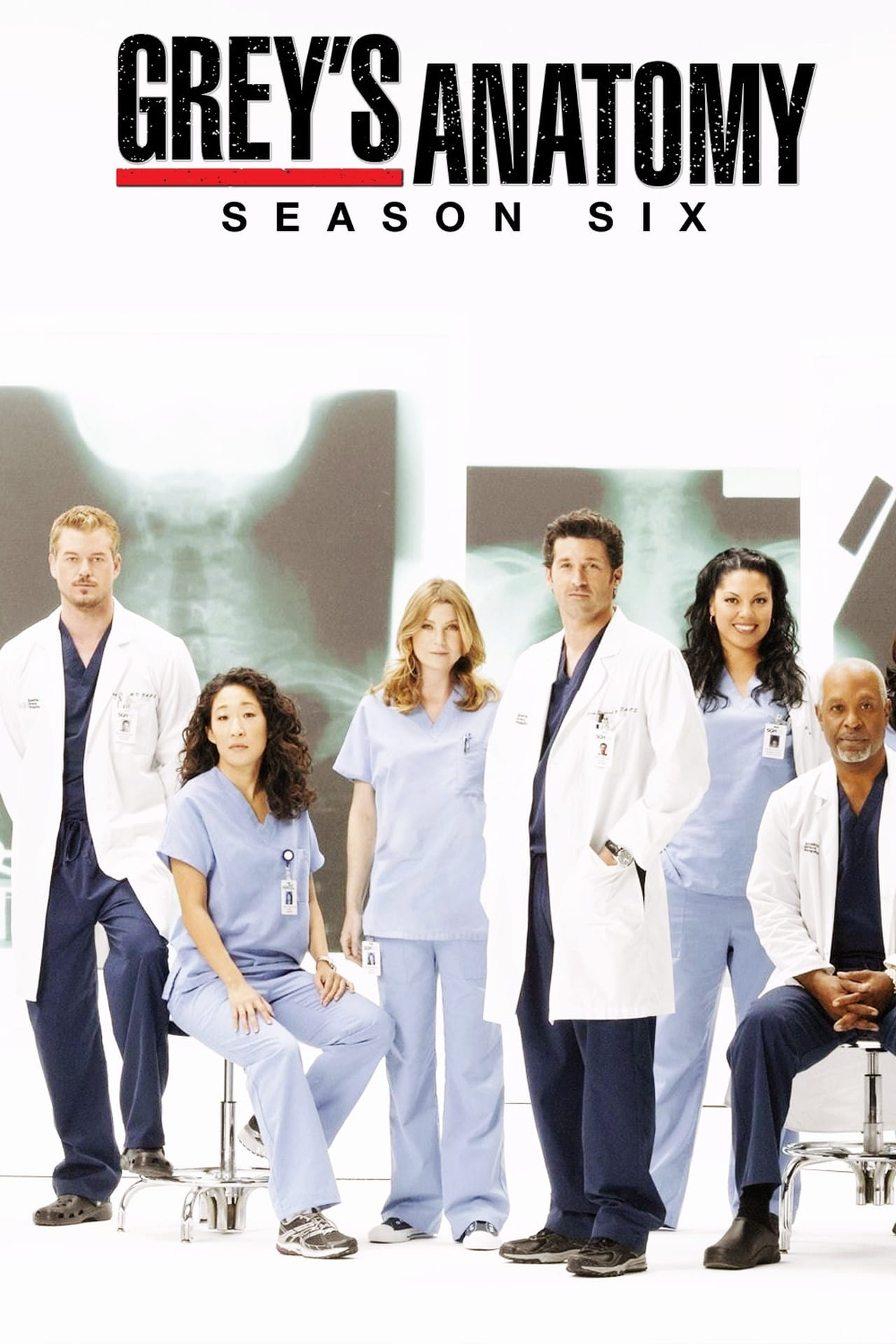 Putlocker Grey's Anatomy Season 6 (2009)