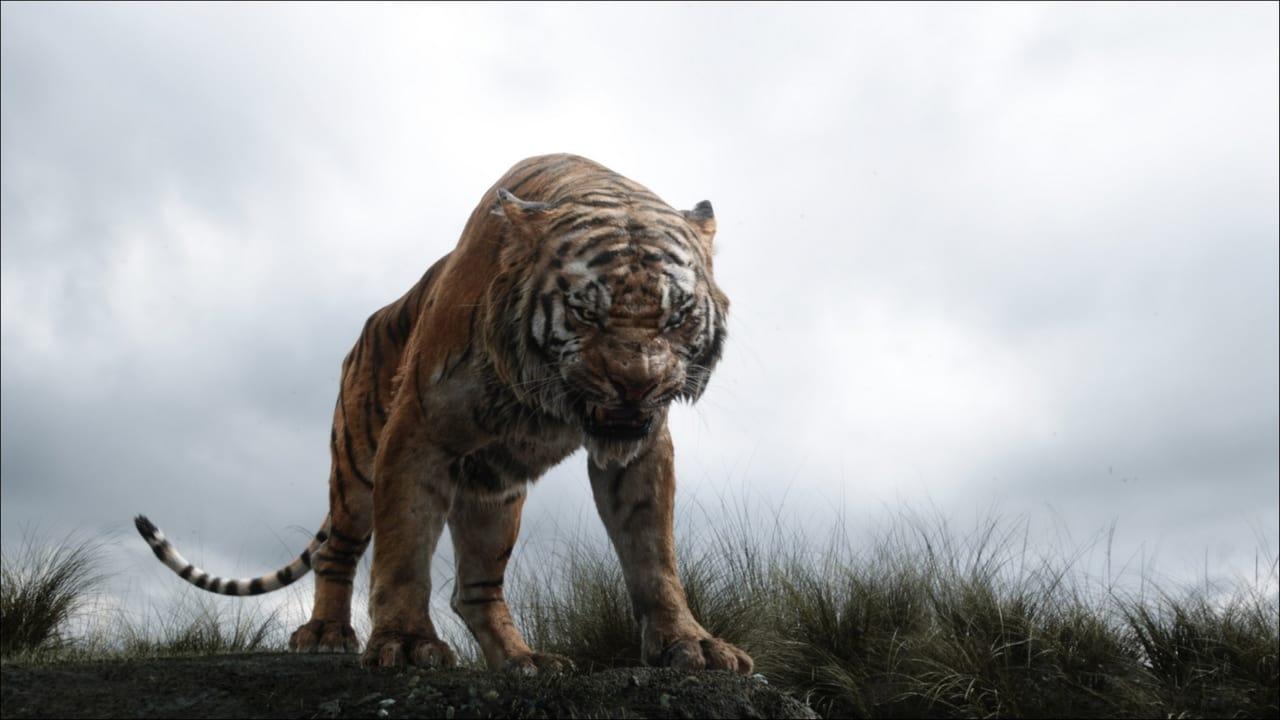 The Jungle Book backdrop