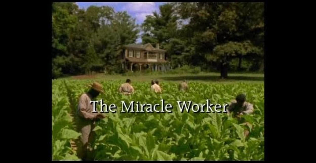 The Miracle Worker BackDrop