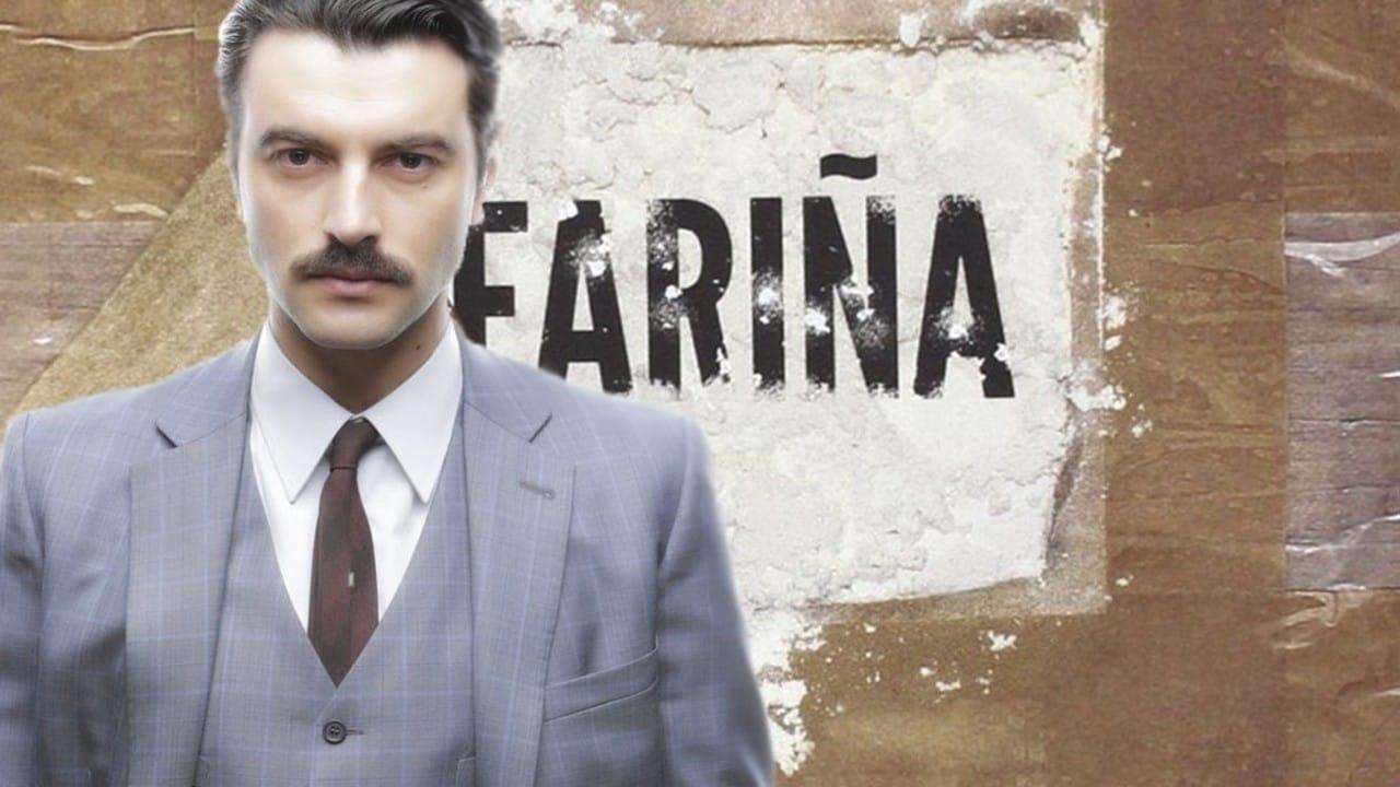 Ver Fariña Serie TV online