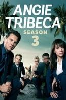 Angie Tribeca : Saison 3