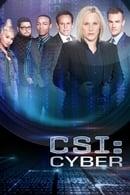 CSI: Cyber Season1
