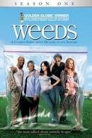 Weeds Temporada 1