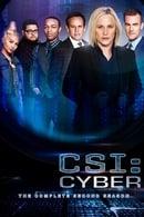 CSI: Cyber Season 2