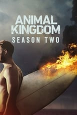 Animal Kingdom 2ª Temporada Completa Torrent Dublada e Legendada