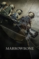 Image Le Secret des Marrowbone