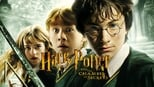Harry Potter and the Chamber of Secrets small backdrop