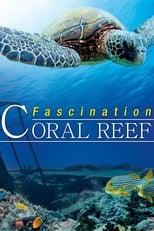 Faszination Korallenriff 3D