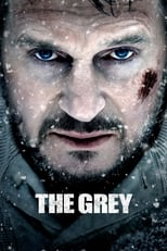 The Grey - one of our movie recommendations