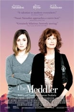 The Meddler small poster
