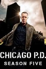 Chicago P.D. Distrito 21 5ª Temporada Completa Torrent Legendada
