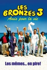 Putlocker French Fried Vacation 3 (2006)