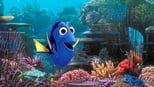 Finding Dory small backdrop