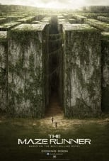 The Maze Runner small poster