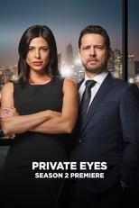Private Eyes 2ª Temporada Completa Torrent Legendada