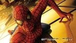 Spider-Man small backdrop