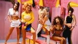 Spice World small backdrop