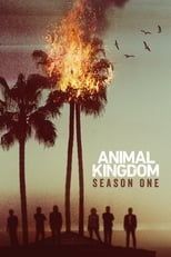 Animal Kingdom 1ª Temporada Completa Torrent Legendada