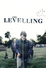 Poster for The Levelling