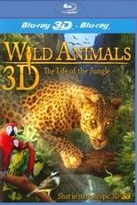 Wild Animals 3D