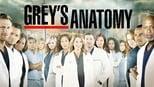 Grey's Anatomy small backdrop