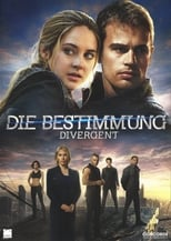 Divergent small poster