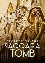 Image Secrets of the Saqqara Tomb (2020)