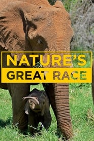 Nature's Great Race streaming vf