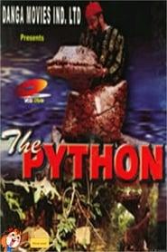 Foto di The Python