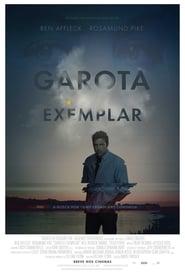 Garota Exemplar (2014) Blu-Ray 1080p Download Torrent Dublado