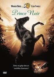 Prince Noir en streaming