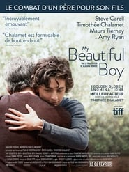 My Beautiful Boy Poster