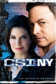 CSI: NY saison 7 streaming vf