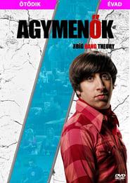 The Big Bang Theory - Season 5