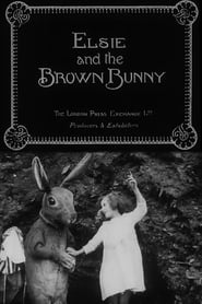 Elsie and the Brown Bunny