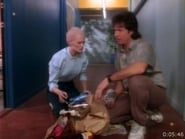 Alien Nation staffel 1 folge 14