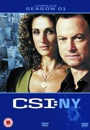 CSI: NY saison 1 streaming vf