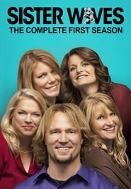 Sister Wives - Season 3 Season 1