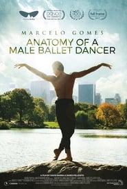 Anatomy of a Male Ballet Dancer (2018)