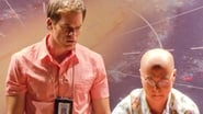 Image Dexter Streaming 6x9