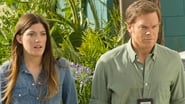 Image Dexter Streaming 8x4