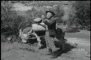 Perry Mason Season 3 Episode 19 : The Case of the Bashful Burro