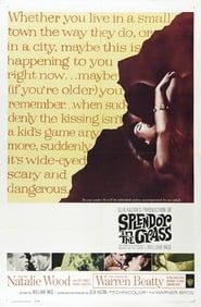 Splendor in the Grass Online HD Filme Schauen