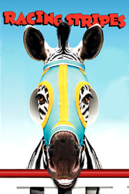 Racing Stripes Film Plakat
