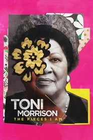 Toni Morrison: The Pieces I Am Netflix HD 1080p