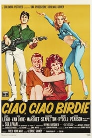 Ciao ciao Birdie