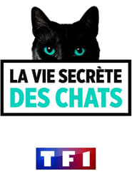 La vie secr�te des chats en Streaming gratuit sans limite | YouWatch S�ries en streaming