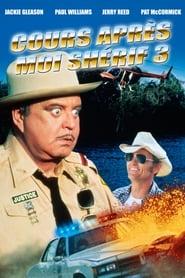 Cours après moi Shérif 3 (1983) Netflix HD 1080p