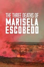 The Three Deaths of Marisela Escobedo Viooz